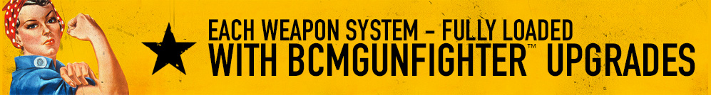 Each Weapon System - Fully Loaded With BCMGUNFIGHTER Upgrades!